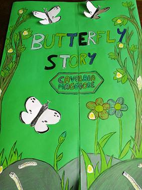butterflykit esperienze