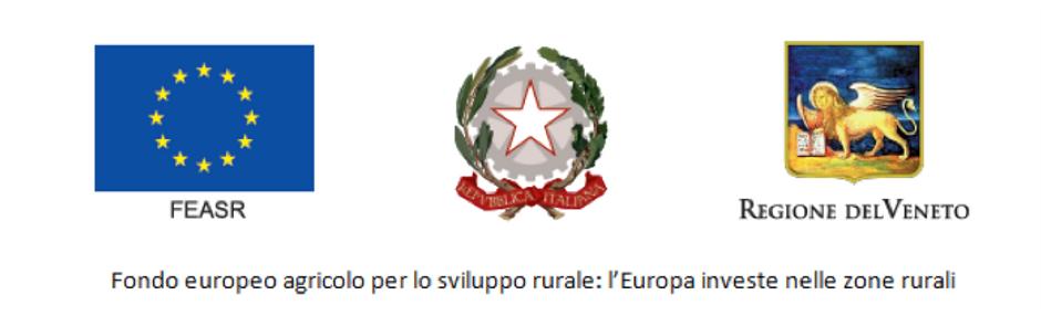 EUR_REGIONE_logo.png