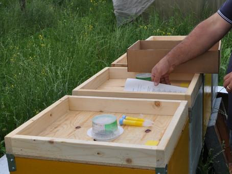 Al via le prime sperimentazioni in Campo del Progetto BeeOShield
