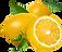 lemon-clipart-1.png