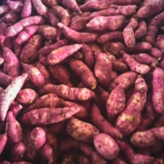 Sweet Potatoes.png
