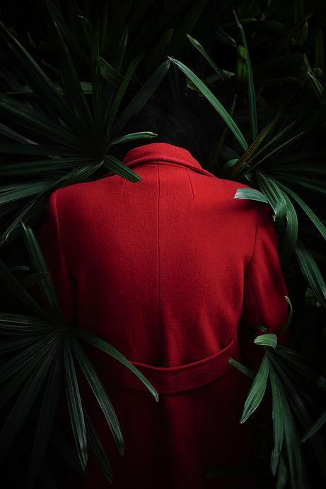 SAM_Redcoat2.jpg