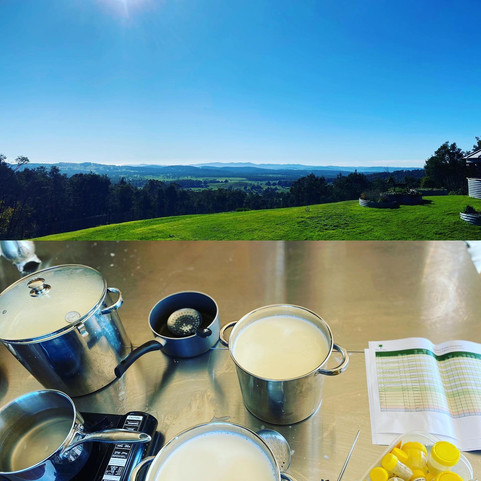 Cheesemaking with a view