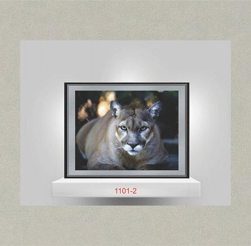 1101-2 Metal Photo