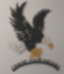 J71352M Eagle (Chase your Dreams) Multi