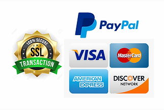 Secured Payment Tag PNG.png