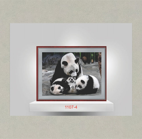 1107-4 Metal Photo