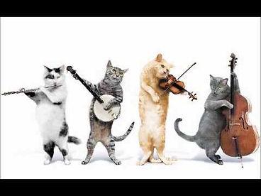 Cat Musicians.JPG