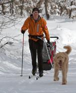 dad-kid carrier-dog.jpg