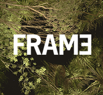 frame noma Marco Villa Mateos