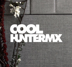 coolhuntermx bridge business center