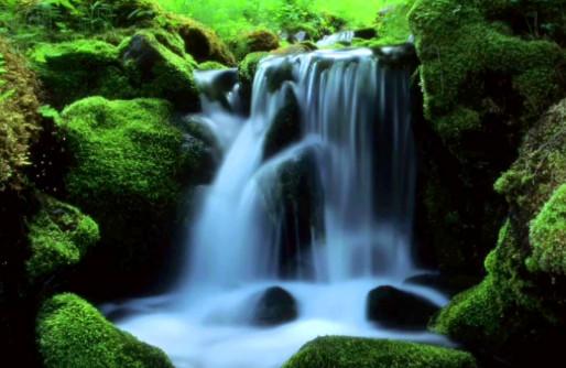Ayurvéda sur l'Eau – Qu'est-ce que l'Ayurveda a à dire à propos de l'eau?