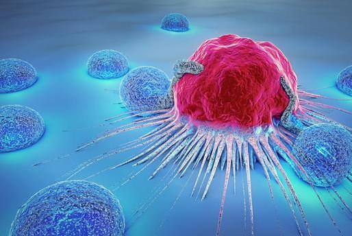 Pourquoi le cancer aime le fructose
