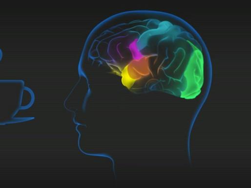 Que se passe-t-il dans votre cerveau lorsque vous goûtez à la nourriture ?