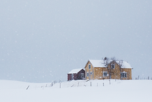 A house in the blowing snow on the island of Lofoten, Norway in winter