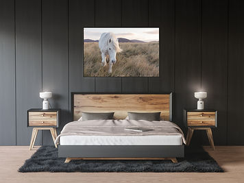 Equine printed image on wall by Carla Regler Photography