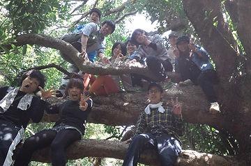 ツアー 鳥羽 子供 木登り 夏休み
