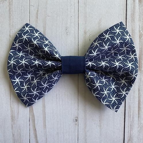 Starfish on Navy