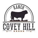 95364 - RanchCoveyHill - LOGO GRIS  BA.j