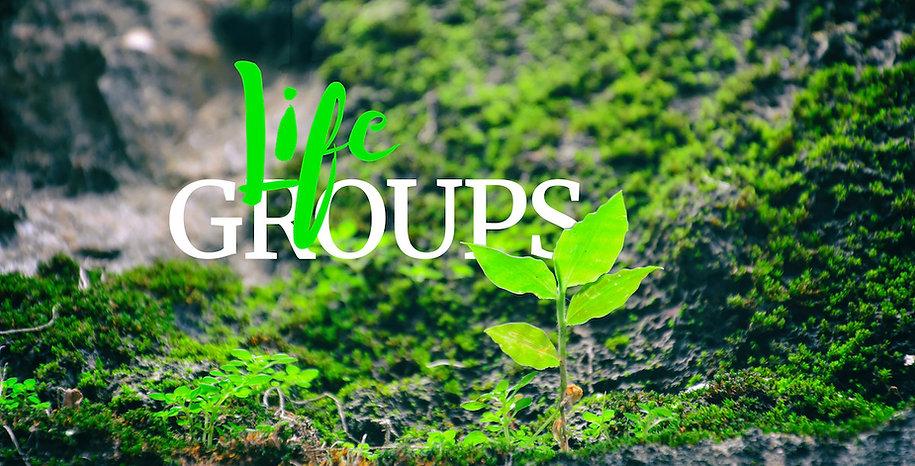 20210509 Life groups.jpg