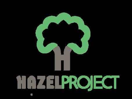 Hazel Project - update