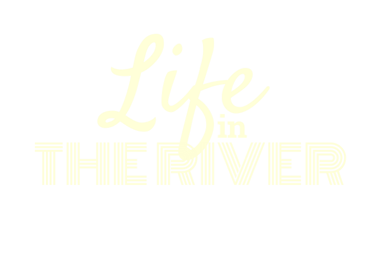 Life in the river.png