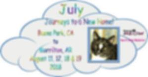 July Banner.jpg