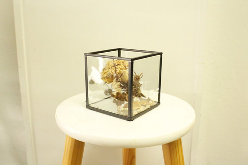 Dried Cube (Small)