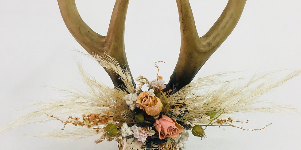 Dried Stag Head