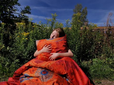 'Rainbow' bedding in garden