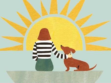 Adopting a Pet: Unexpected Benefits