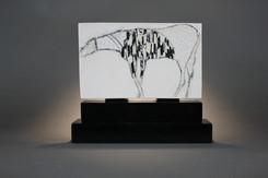 Horse for Cristina