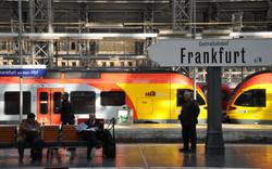 Frank0-294