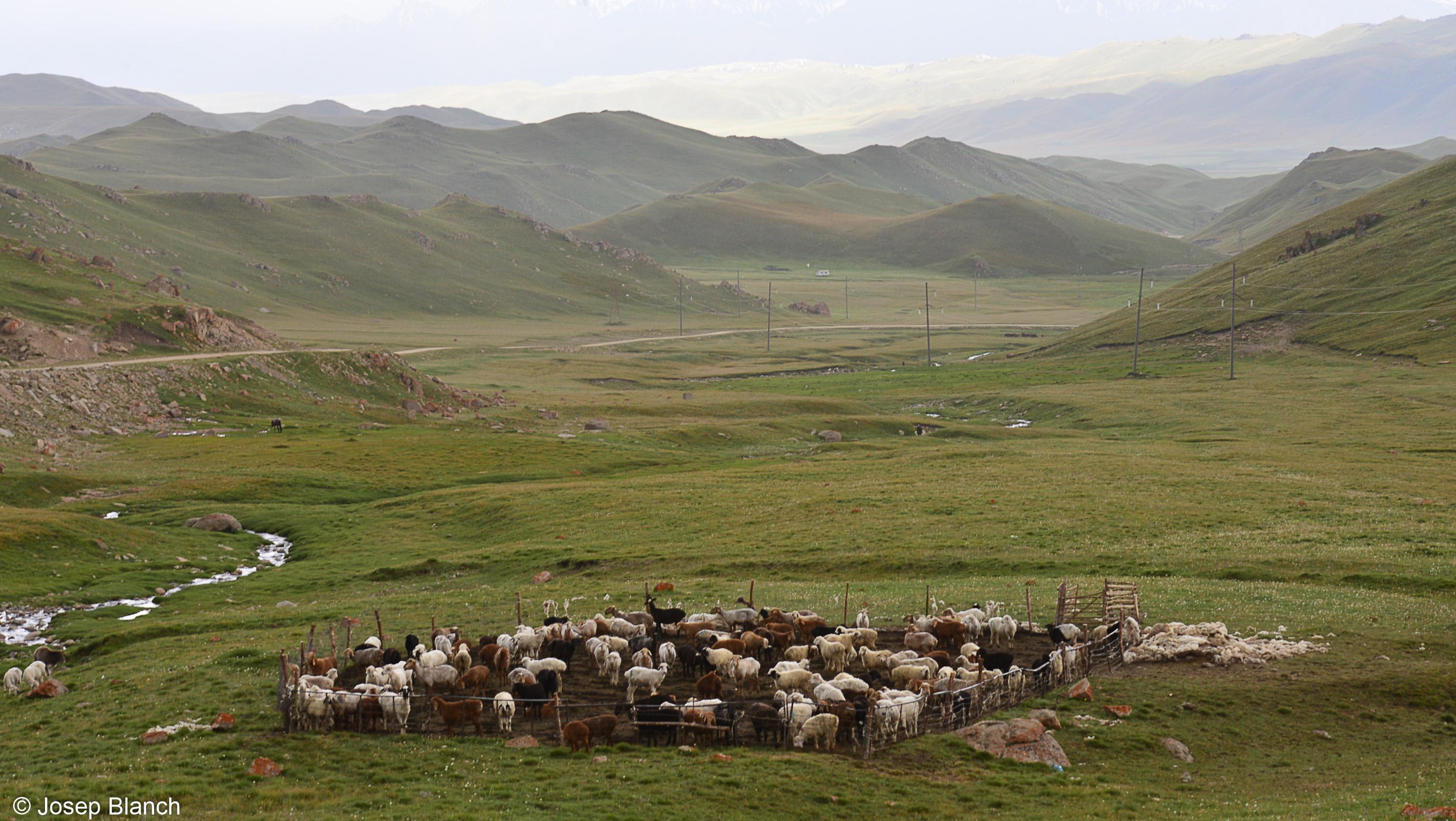 Kirguistan 000-068