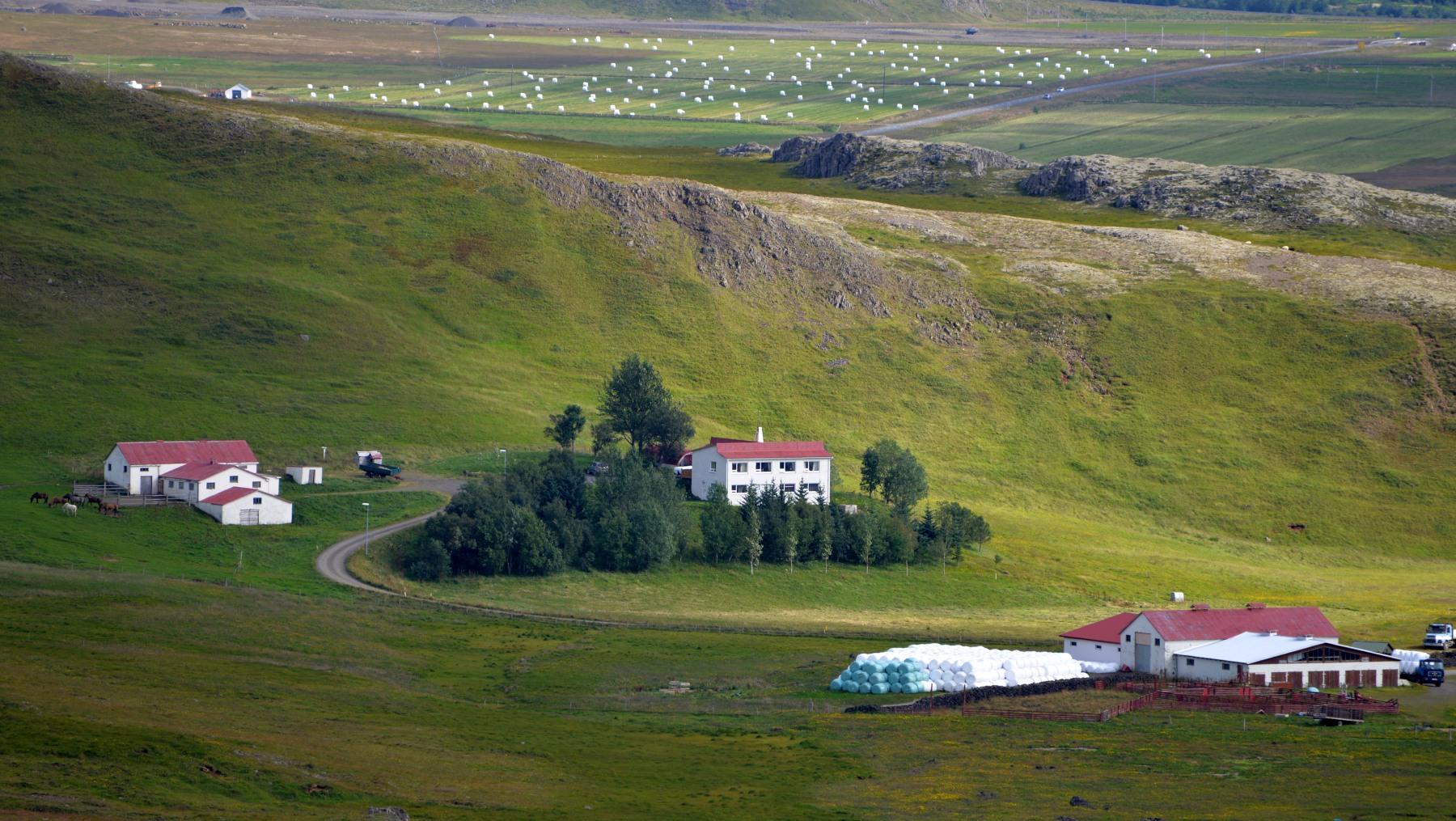 Iceland 000-049.JPG