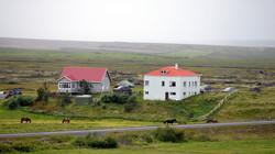 Iceland 000-239.JPG