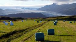 Iceland 000-797.JPG