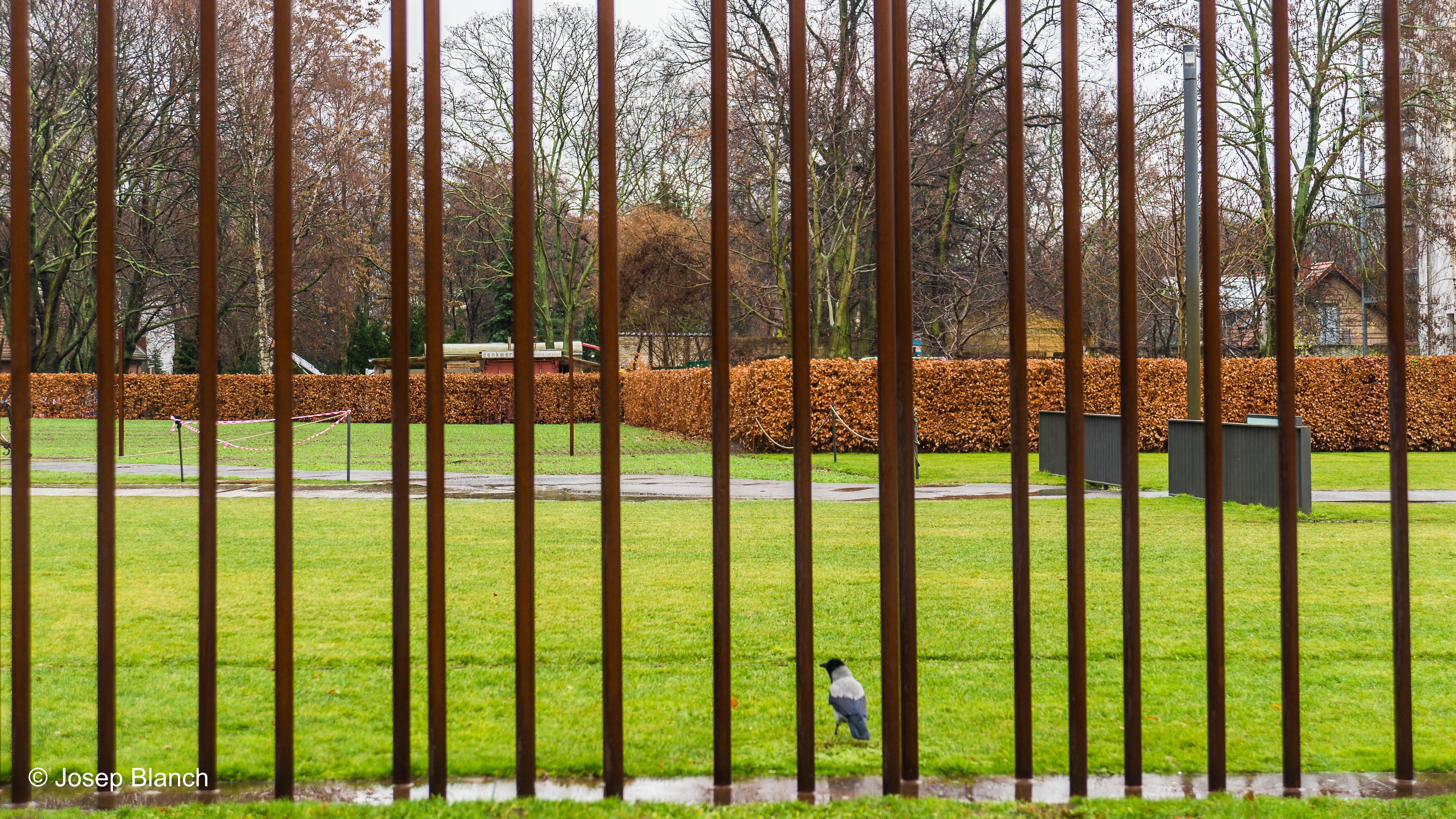 Berlin Dic'16-035