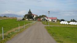 Iceland 000-086.JPG
