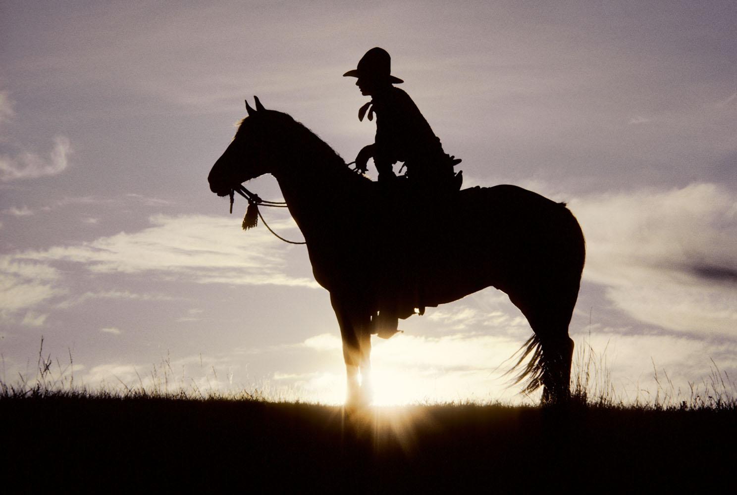 Sunrise Cowboy, Montana