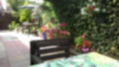 beachdene, guest house, hotel, skegness, garden