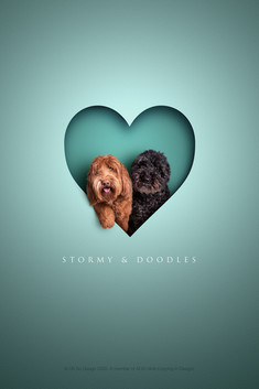 Doodles and stormy.jpg