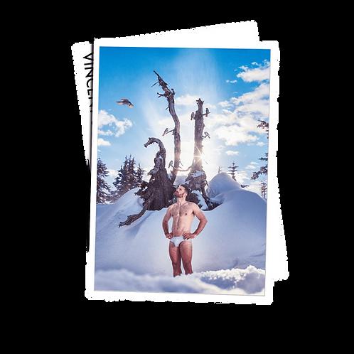 Snowbirds - Postcard