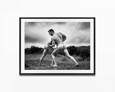The Fight - Art Print