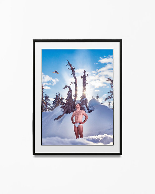 Snow Birds - Art Print
