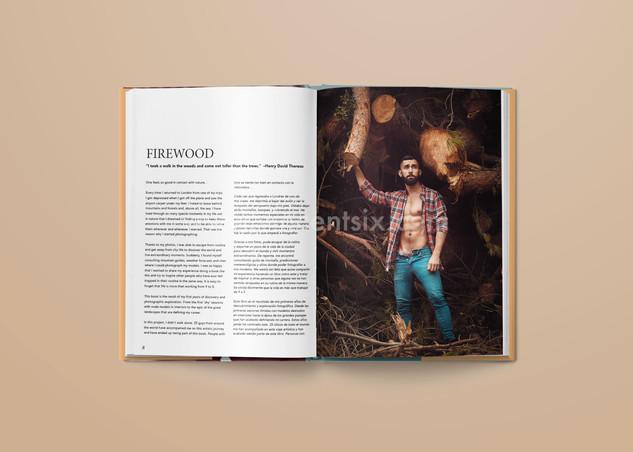 spread_firewood09.jpg