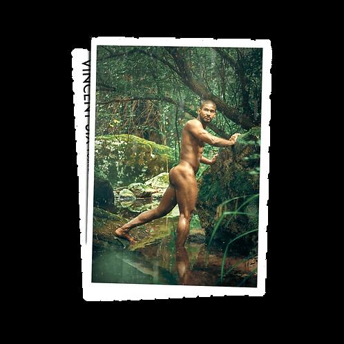 Jungle River - Postcard