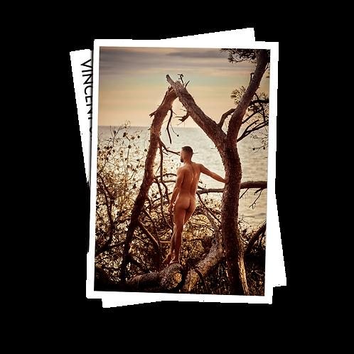 The Sea - Postcard
