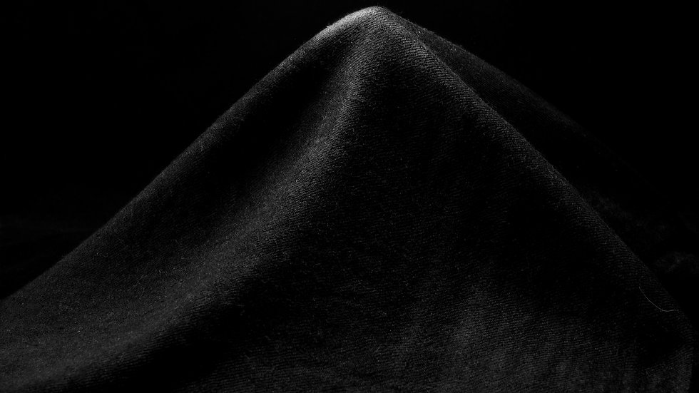 Peuplier noir