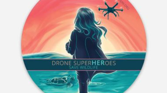SuperHEROES Drone Girls Button